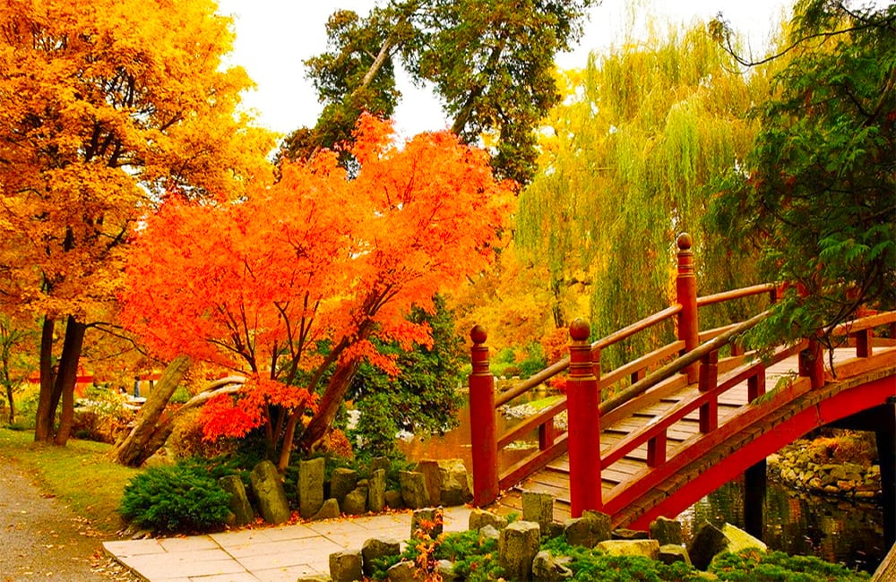 Explore the Japanese Gardens in Wroclaw Poland with Columbus World Travel